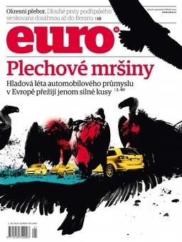EURO 41_2013
